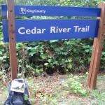 Cedar River Trail at Green to Cedar River Trail Confluence